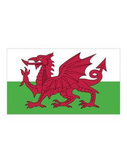 Fahne Wales / 90 x 150 cm