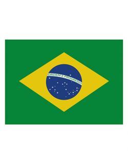Fahne Brasilien / 90 x 150 cm