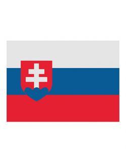 Fahne Slowakei / 90 x 150 cm