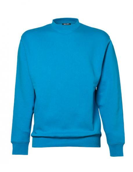Heavy Sweatshirt / Pullover